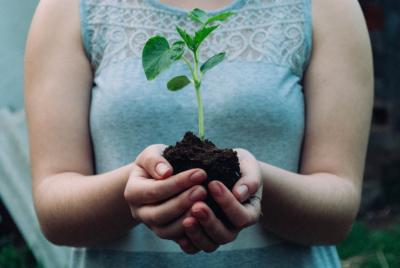 Image of woman holding both hands full of soil and a plant.